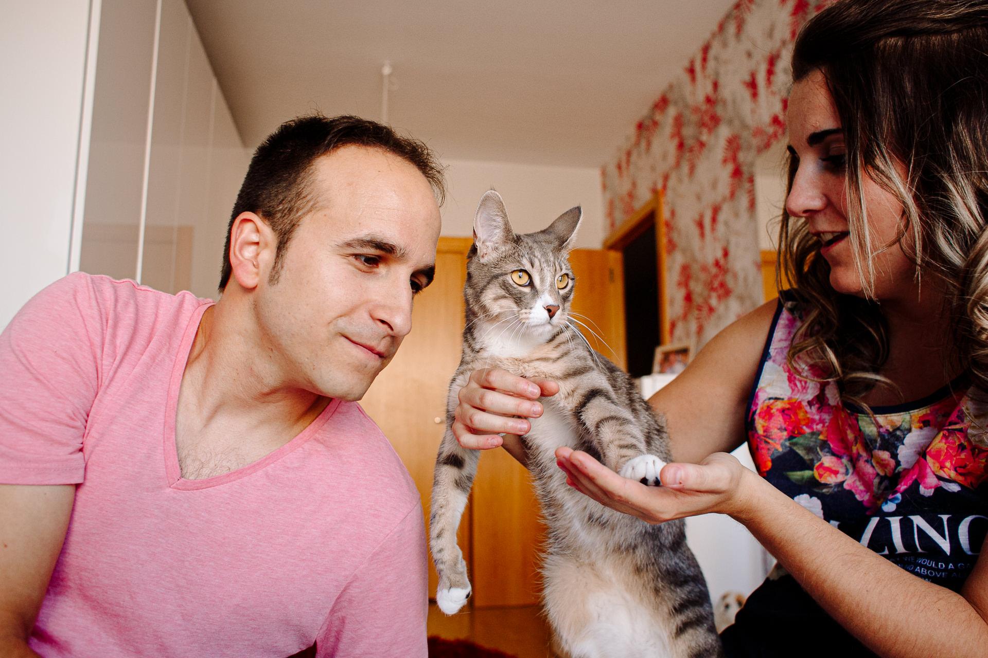 sesion fotos perro gato barcelona 183841