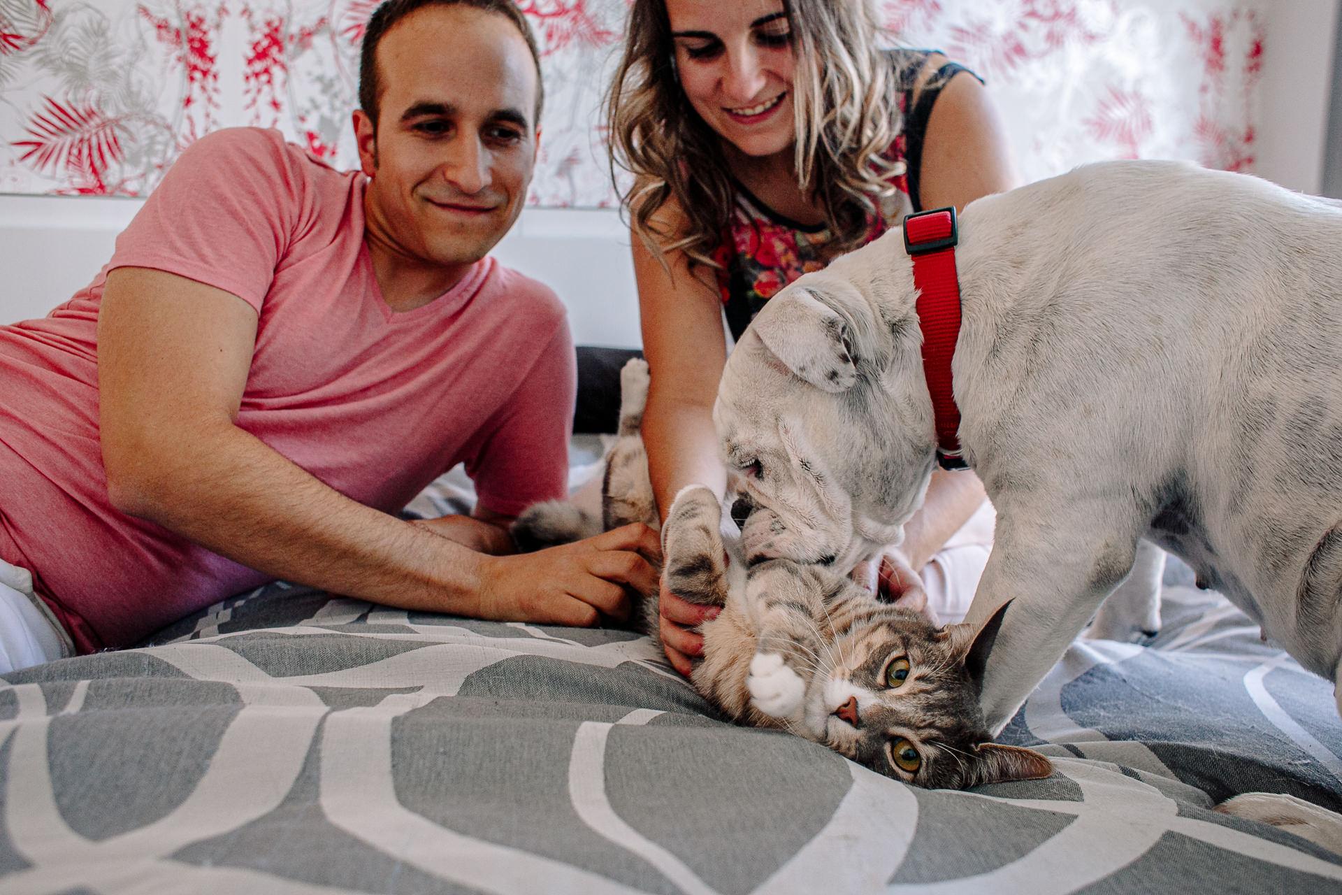 sesion fotos perro gato barcelona 184827