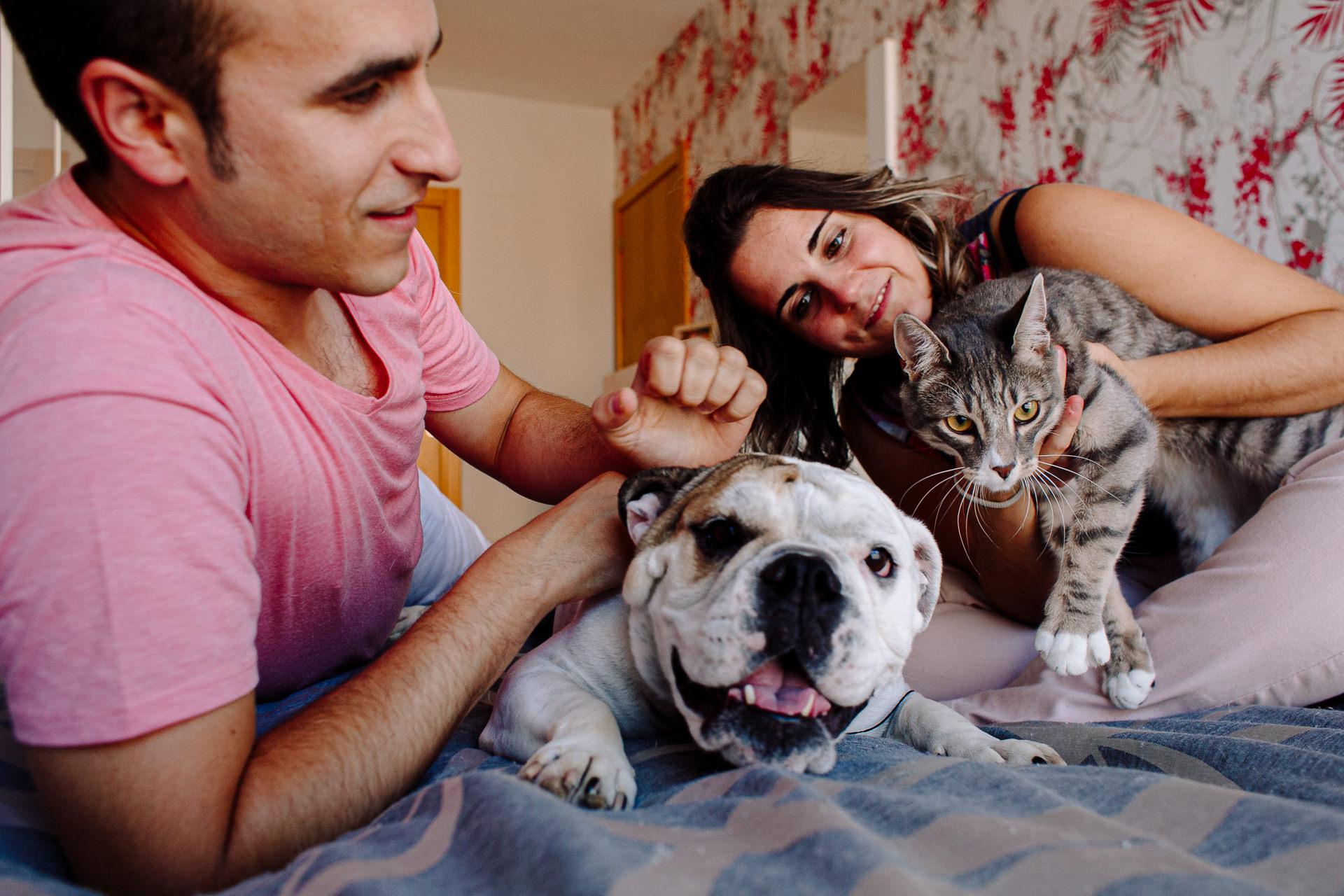 sesion fotos perro gato barcelona 184902